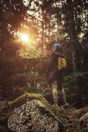 Traveler with backpack walking in a misty forest at sunset