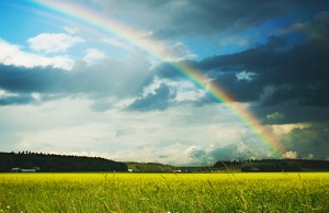 Rainbow over green field with dark clouds in the sky
