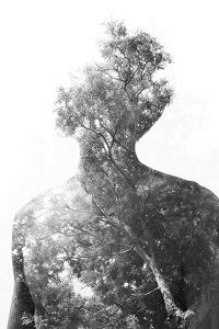 A man-shaped silhouette is made out of trees.
