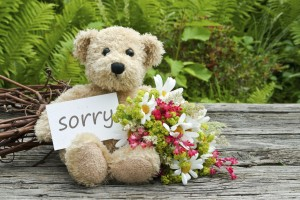 Teddy bear with flowers and a sorry note