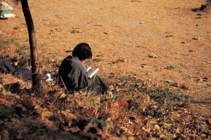 person sitting in fall leaves