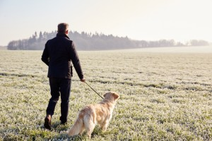 Man walking dog in field