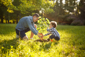 Parent and child outside planting tree in field