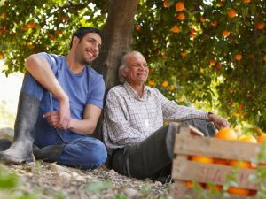 A senior and younger man sit under orange tree similing