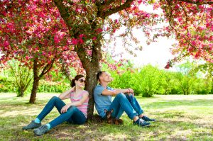 Two people and a small dog sit under a tree with bright pink blossoms