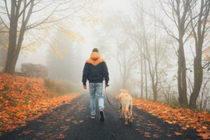 Rear view of person in jeans and jacket walking dog in fog