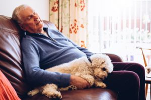 Man taking a nap with his dog