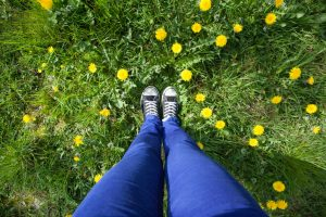 Overhead view of a person's legs in blue pants and feet in black and white sneakers standing in dandelion-spotted grass
