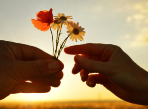 Two outstretched hands shown at sunset. One hand is full of small flowers and other hand reaches to choose one