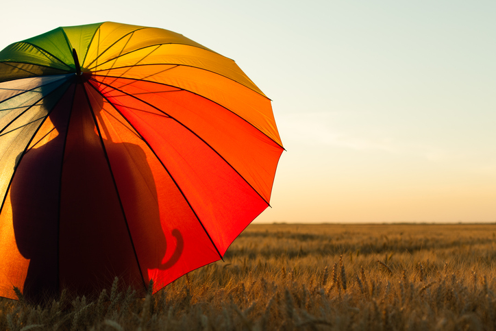 Silhouette holding a rainbow umbrella as the person overlooks an empty field.