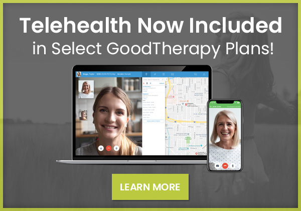 A Telehealth Solution for Mental Health Professionals