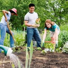 Group of teens working in a community garden