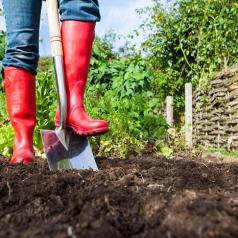 Person wearing red rain boots using a shovel in their garden