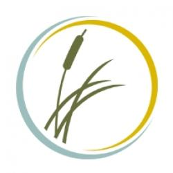 Main Profile Image - The Lakehouse Recovery Center